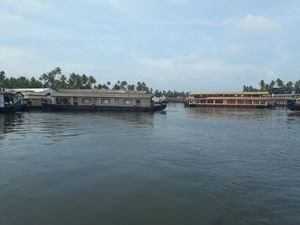 Alleppey Diaries
