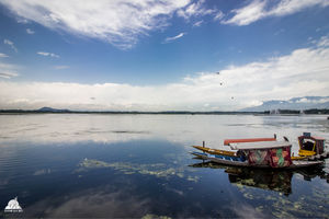 Dal Lake and its different moods!