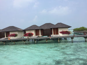 Leisure Trip to Maldives