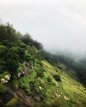 A Day in Nandi Hills