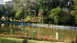 Ooty-Coonoor: 7 days in the Romantic paradise of  South India
