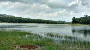 A scenic buty at Kerala Tamilnadu border.  Netta, Chittar.2 Dam reservoir