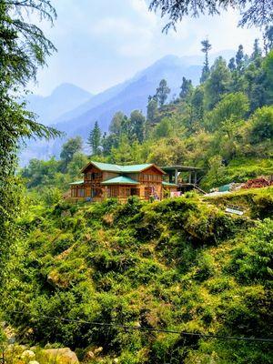 i feel alive...and alive is awesome....JIBHI and Gushaini, Himachal Pradesh #tirthanphoto