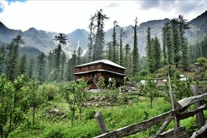 Enriched with Paradise, offbeat destination in Tosh, #kutla...