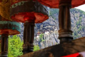 Tiger's Nest , Bhutan. A memorable trek through the woods , chilling wind and beautiful nature