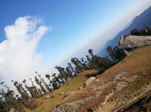 Churdhar peak trek , himachal pradesh 3700 mtr height. 1 day trek morning to evening-night stay
