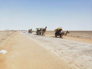 WOW Desert of Salt,White Desert Of Kutch