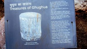 "Treasure of Ghughua ""Fossil National Park"""