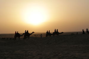 A Day in the Thar Desert - An Experience Not To Be Missed