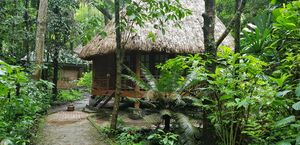 Paradise on Earth:Barefoot at Havelock Jungle Resort in Swaraj Dweep (Havelock Island).