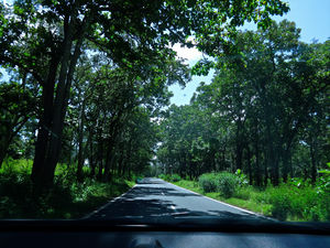 Long drive from Kollegal to Bandipur (NH 766)