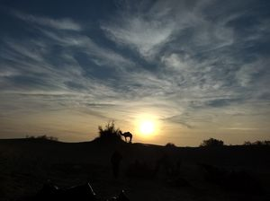 Thar: Peace amongst the dunes