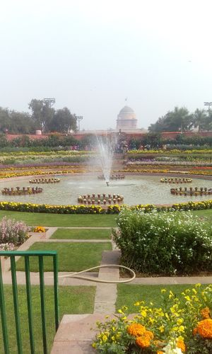 Mughal Gardens, soul of Rashtrpati Bhawan.