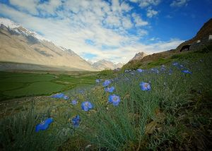 Spiti - The middle Land