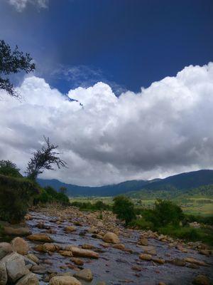 Bhutan trip including Phobjika valley