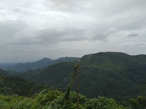 wagamon..unbeleievable peak noon clicks.Noontime+ fog+ rain.superb combination#colourgreen
