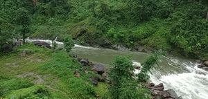 The greenery generated by monsoon here,will blow your mind..