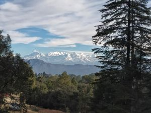Ranikhet - Cold breeze, lush green surface and hot paneer pakodas.