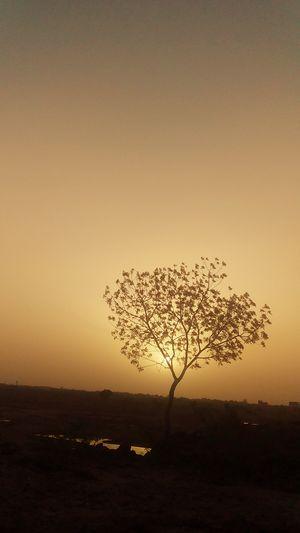 सूर्यास्त
