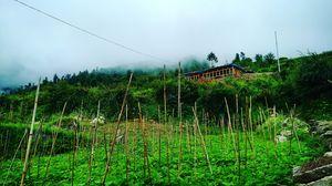 villag jakhol the most beautiful nd culture wonderland in utterakhand utterkashi