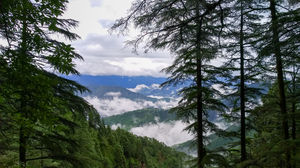 A day in the small suburb called Landour!
