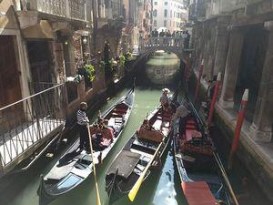 """Venezia - """"The floating city"""" - city of canals, bridges, Gondolas, without roads & vehicles"""