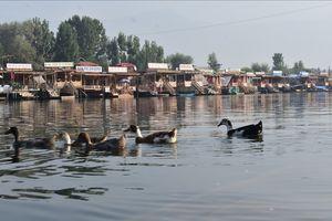Kashmir visit in  September