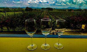 Sula vineyard must visit place.