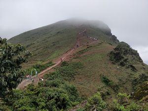 Mullayangiri, Chikmagalur