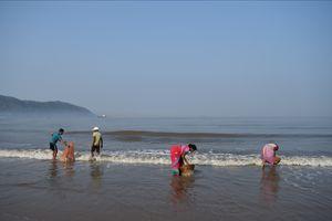 Glimpses of Karwar beaches, Karnataka