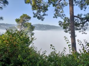 Ranikhet is a hill station in Uttarakhand State, northern India. It's known for views of Himalaya..