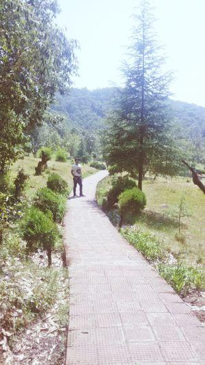 Paudi Garhwal Trip 1 #colourgreen