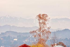 Kangra, Himachal Pradesh