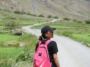 Mushko: Valley of Wildflowers, exiotic Himalayan Brown Bear and Tiger Hill of '99 Kargil War