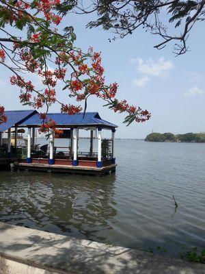 Kochi City
