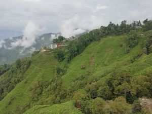 Darjeeling - Tinchulley -Lamahatta itinerary 4 days 3 nights