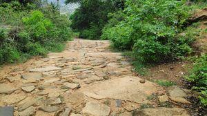 Wandering near Bengaluru