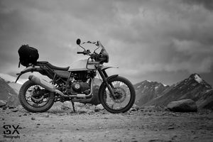 Himalayans at Himalaya (Black & White)