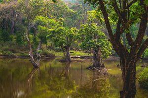 Mesmerizing landscapes in Kgudi