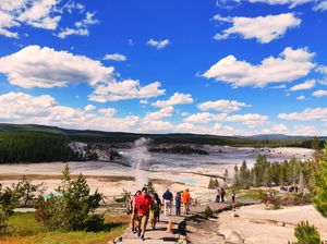 Visit to nature's wonder-Yellowstone National Park