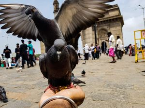 Being Amrish Puri Mumbai