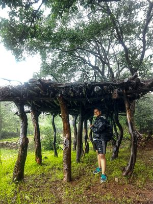 Trekking Tales