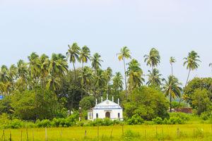 Goa: Abode of Surprises!