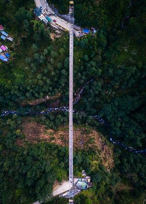 The Highest Hanging Bridge In India