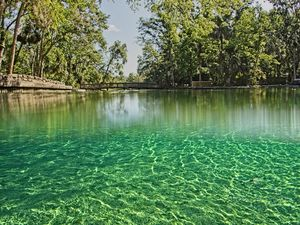 Natural Springs of Orlando are Worth to Visit For