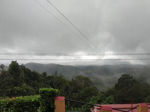 COORG by roadway is like way to heaven .
