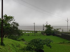 Malshej Ghat - A beautiful gem near Mumbai