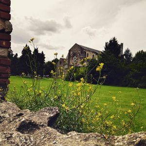 Visit to Waltham Abbey, Essex - amidst nature, church and beautiful quaint town #uk #essex #london