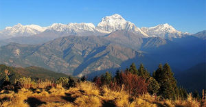 Poon Hill Marga 1/2 by Tripoto