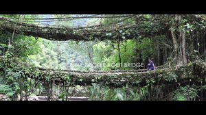 Double Decker Living Root Bridge, Cherrapunjee, Meghalaya, India